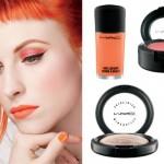 Hayley Williams: MAC Makeup Collection