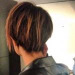 dev-hair-brown-1
