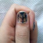 katy-perry-nails-cat