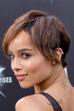 Celebrity Pixie Cut Hairstyles Steal Her Style