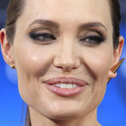 Angelina Jolie Makeup: Brown Eyeshadow, Taupe Eyeshadow Eyeshadow ...