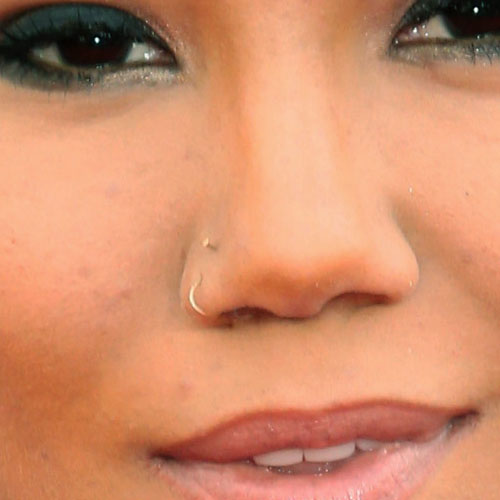 66 Celebrity Nosenostril Piercings Page 6 Of 7 Steal Her Style