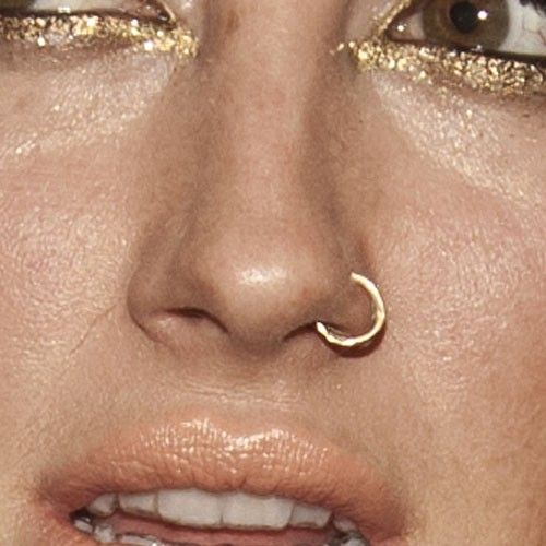 66 Celebrity Nose Nostril Piercings Page 4 Of 7 Steal Her Style Page 4