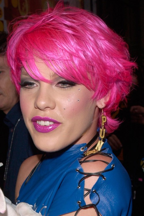 Pink\'s Hairstyles & Hair Colors | Steal Her Style