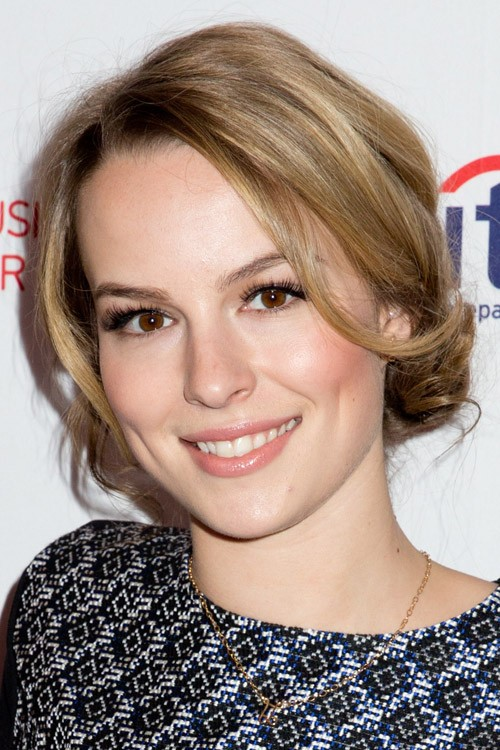 Bridgit Mendler Straight Light Brown Face Framing Pieces