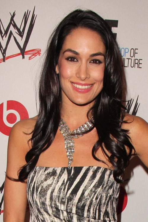 Brie Bella Clothes Amp Outfits Steal Her Style