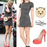 Taylor Swift: Leopard Dress, Cat Bag