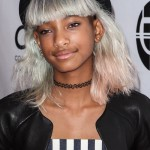 willow-smith-hair-11