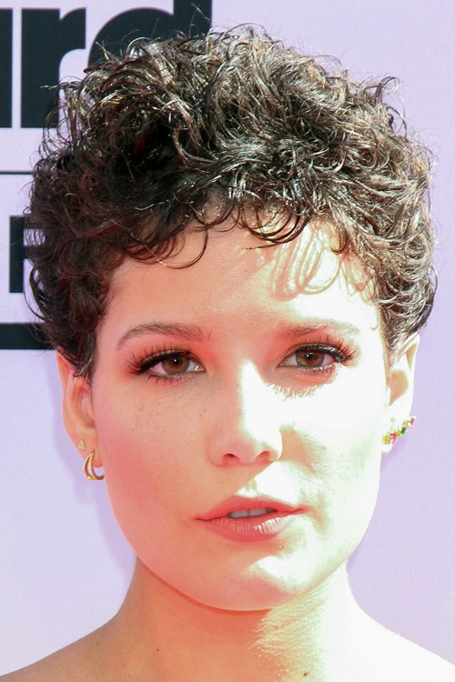 Halsey Curly Dark Brown Messy Pin Curls Hairstyle Steal