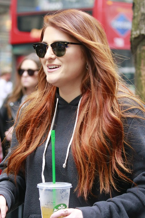 12 Hairstyles With Ginger Highlights Highlights Steal