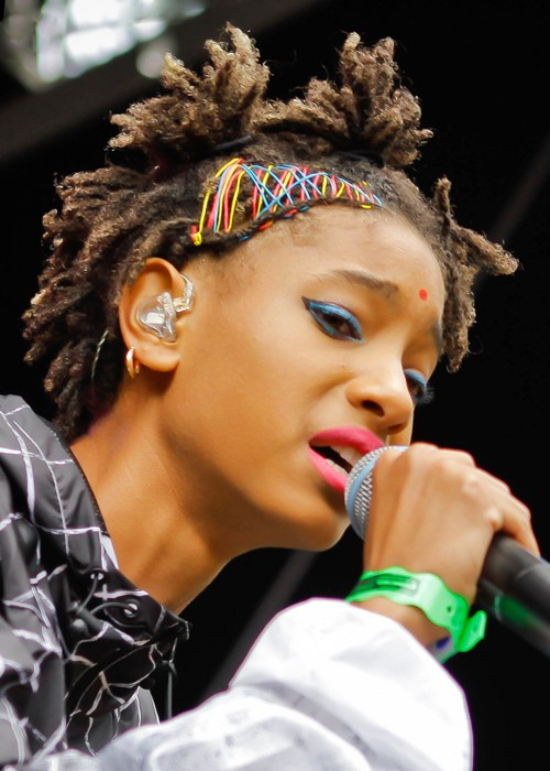 Willow Smith Teased Dark Brown Dread Locks Hairstyle
