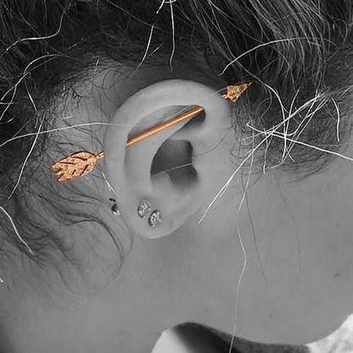 Ashley Tisdale Ear Lobe Industrial Upper Lobe Piercing Steal Her Style