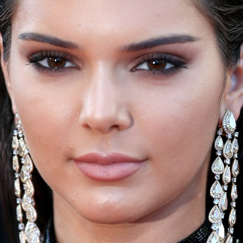 Kendall Jenner Makeup: Brown Eyeshadow, Taupe Eyeshadow & Mauve Lipstick | Steal Her Style