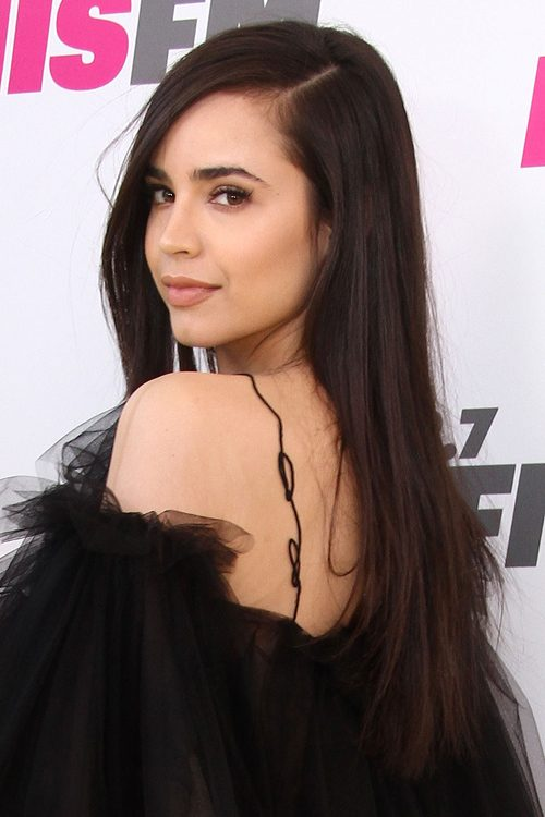 sofia carson straight dark brown side part hairstyle