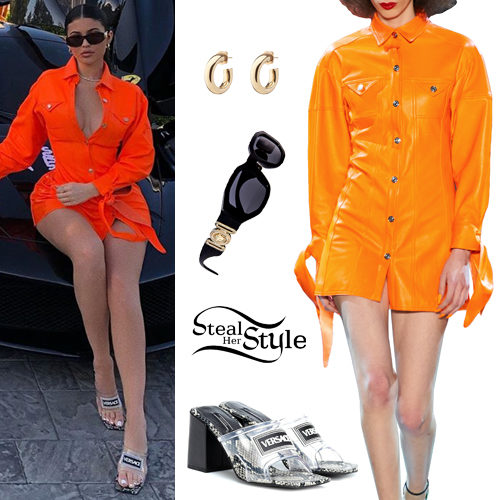 cfc4527fce8e Kylie Jenner Clothes & Outfits | Steal Her Style