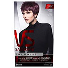 Vidal Sassoon Salonist Hair Color                 in Purple