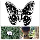 Tattify Butterfly Moth - temporary tattoo (Set of 2)