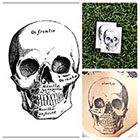 Tattify Skull - temporary tattoo (Set of 2)