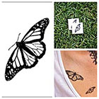 Tattify Butterfly - temporary tattoo (Set of 2)