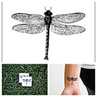 Tattify Fly - temporary tattoo (Set of 2)