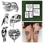 Tattify Bones 'N Birds - Temporary Tattoo (Set of 10)