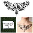 Tattify Moth - Temporary Tattoo (Set of 2)