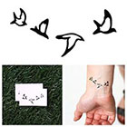 Tattify Double Date - Temporary Tattoo (Set of 2)