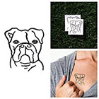 Tattify Beware - Temporary Tattoo (Set of 2)