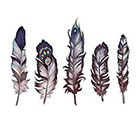 Tattoo You Large Temporary Feather Tattoo by Kate Prescesky
