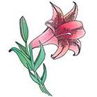 de Krantenkapper Lily Temporary Tattoo