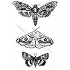 JoellesEmporium Moths Temporary Tattoo, Death Moth, Moth Temporary Tattoo, Tattoo Temporary, Black And White, Pointillism, Nature Art