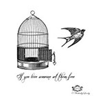 Wickedly Lovely Set them free, Vintage Birdcage and Bird with quote Wickedly Lovely Skin Art Temporary Tattoo