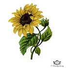Wickedly Lovely Sunflower temporary tattoo, vintage sunflower tattoo, Sun flower, festival tattoo, Body Art, Skin Art, Wickedlylovely, (choose your size)
