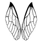 JoellesEmporium Insect Wings Temporary Tattoo, Tattoo Temporary, Nature Art, Insect Wing Illustration Large Temporary Tattoo Dragonfly Wing Temporary Tattoo