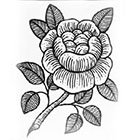 Tattoo You Rose Temporary Tattoo by Myra Oh