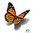 Wickedly Lovely Monarch Butterfly, 3d butterfly tattoo Wickedly Lovely Skin Art Temporary Tattoo (available in two sizes)
