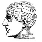The Fickle Tattoo Vintage Phrenology Temporary Tattoo -