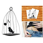 Doodleskin Bird in cage - Temporary Tattoo (Set of 2)