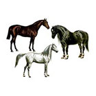 The Fickle Tattoo Vintage Horses Temporary Tattoos -