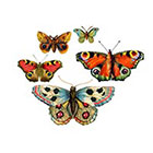 The Fickle Tattoo Vintage Bejeweled Rainbow Butterfly Temporary Tattoos -