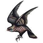 Tattoo You Bird Temporary Tattoo, Falcon Tattoo, by Jon Garber