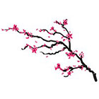 myTaT Cherry Blossom Tattoo, Pink Flower Tattoo, Festival Temporary Tattoo (Set of 2)