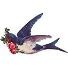 TattooNbeyond Temporary Tattoo - Vintage Swallow and Rose