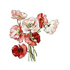 TattooNbeyond Temporary Tattoo - 3 Types of Vintage Florals