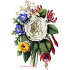 TattooNbeyond Temporary Tattoo - 4 Types of Vintage Floral