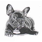 Soma Art Tattoo French Bulldog Temporary Tattoo - SomaArtTattoo Temporary Tattoo - wrist quote tattoo body sticker fake tattoo wedding tattoo small tattoo