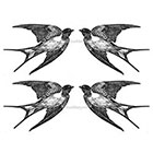 TattooNbeyond Temporary Tattoo - Set of 4 Swallows / Set of 4 Feathers