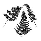 The Fickle Tattoo Vintage Botanical Fern Temporary Tattoo -