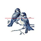 WildLifeDream Blue birds - Temporary Tattoos