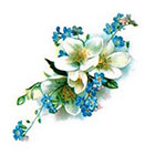 Pepper Ink vintage floral blue and white forget-me-not temporary tattoo- large size